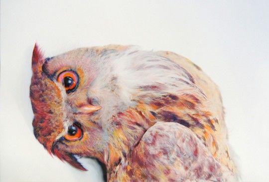 owl_bending